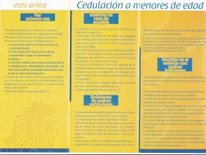 requisitos y pago CI_002